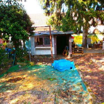 Abriss der maroden Gartenlaube
