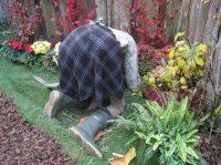 Gartenfreund gesucht!